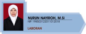 nayir